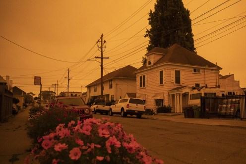 San Francisco Apocaliptico 1