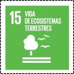 15.VIDADEECOSISTEMASTERRESTRES