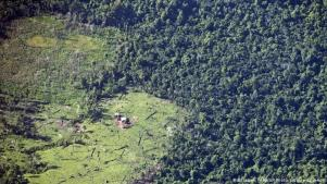 Deforestacion Nicaragua