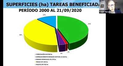 3- Superficies y actividades financiadas 1999 -2020