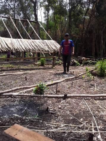 Comunidad (bosques1)