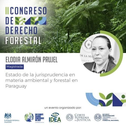 Derecho Forestal IDEA Paraguay 2
