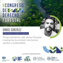Derecho Forestal IDEA Paraguay4