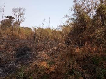 Incendio en el PP Araucaria Agosto 2021 (3)