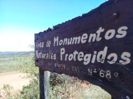 AF Cerrado de San Ignacio Reserva de GN (1)