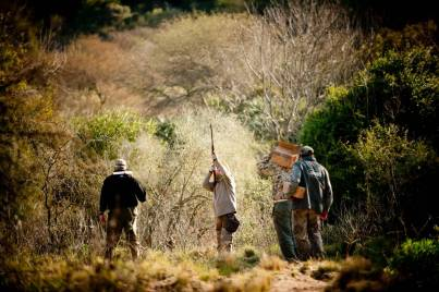 Hunters hunting doves