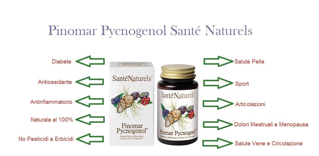 Il Picnogenolo ha proprietà antinfiammatorie. Migliora la slaute delle vene de della circolazione. migliora la resistenza fisica. Antiossidante naturale