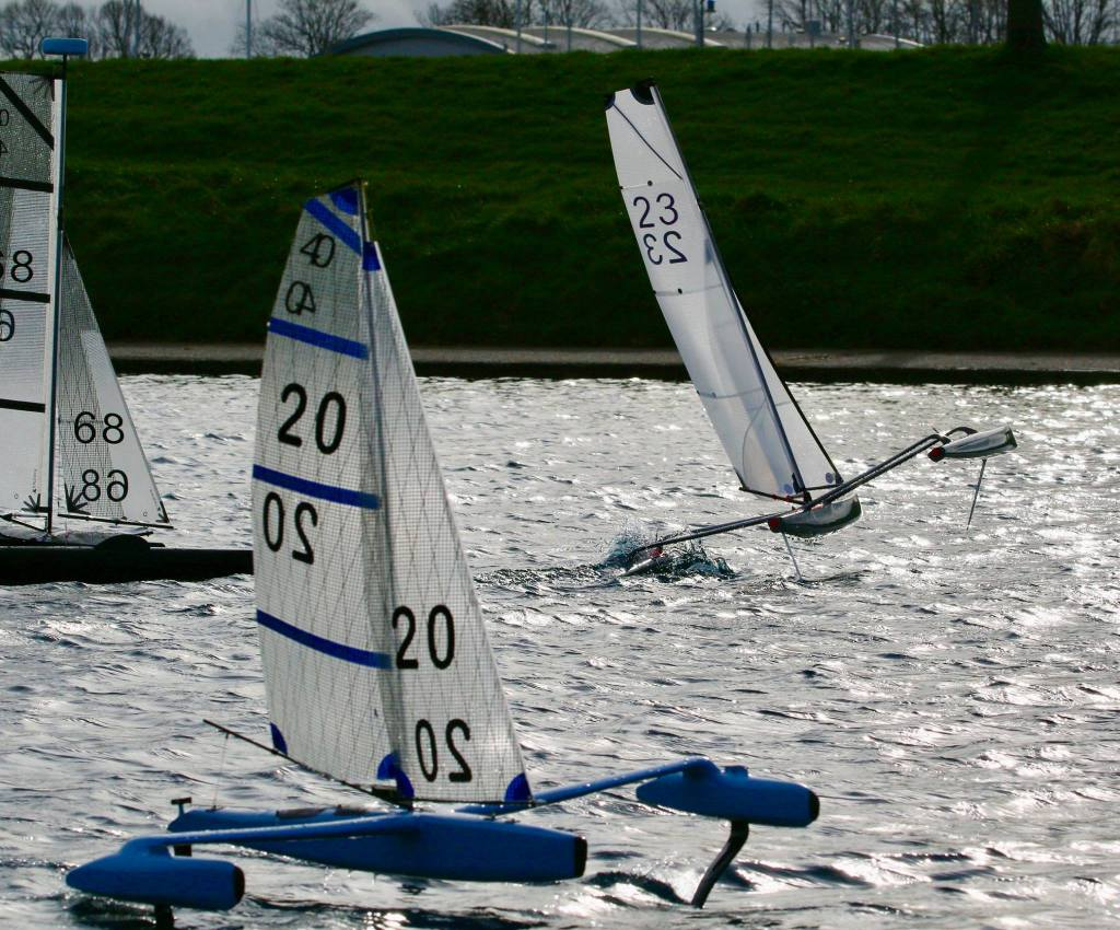 mini 40 regatta