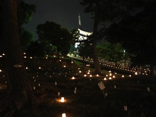興福寺 燈花会