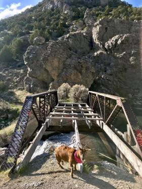Bishop Creek Dam