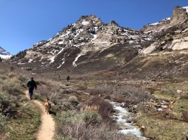 Spectacular trail!