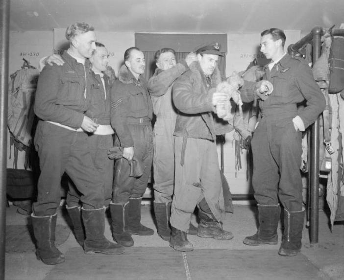 Lancaster skipper, Flying Officer T Blackham of No. 50 Squadron, keeps a firm hold on the crew's lucky mascot, as he is helped into his flying jacket by his flight engineer, Sergeant C Walton, at Skellingthorpe, 19 February 1944