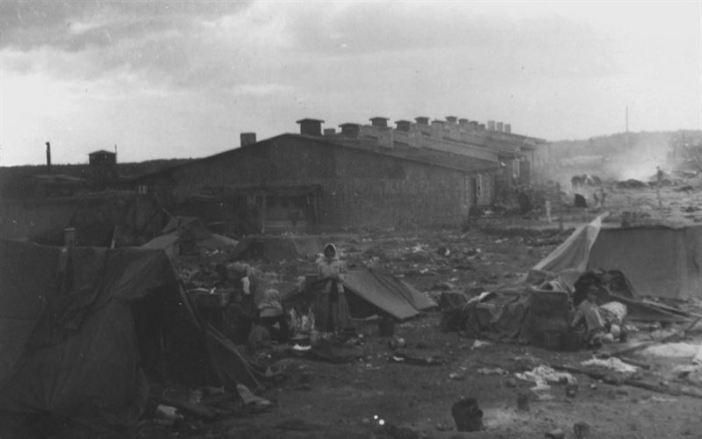 Belsen 13