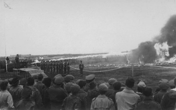 Belsen 9