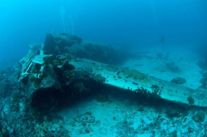 Airplane Wrecks of Truk Lagoon: Betty Plane (Credits: Brandi Mueller)