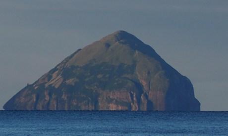 Wildlife Cruise Scottish Cruise Arran and Ailsa Craig