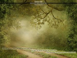 Road to Kostbar  - thumbnail