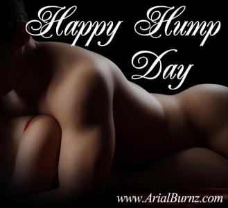 HappyHumpDay-Arial-Burnz