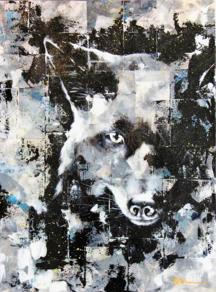 Portrait de Wapi le renard