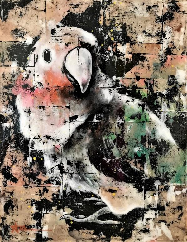 Portrait de Kiwi l'oiseau (commande spéciale)