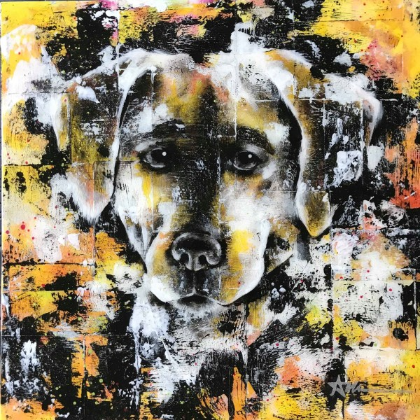 Portrait de Biscuit le chien