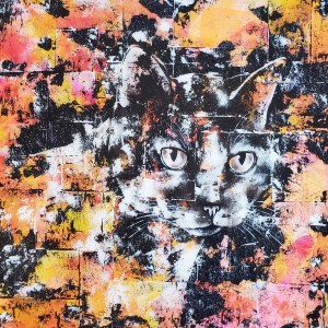 Portrait de Minoune (chat)