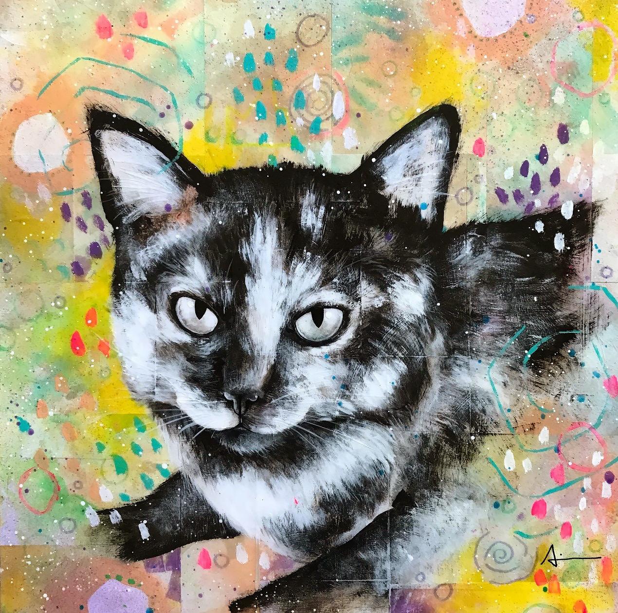 Portrait d'Agathe le chat