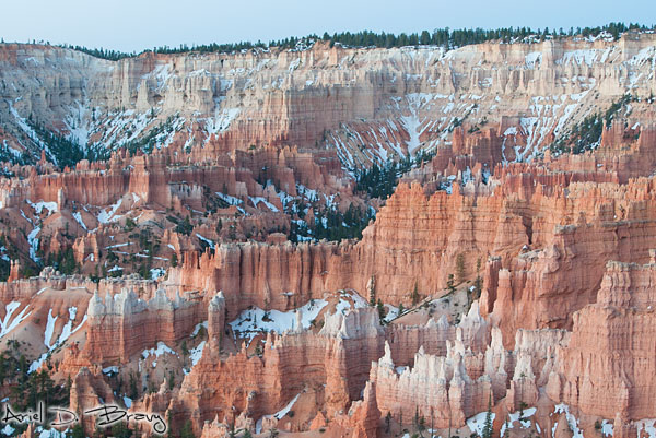 Bryce Canyon hoodoos prior to sunrise