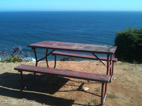 Coastal picnic area