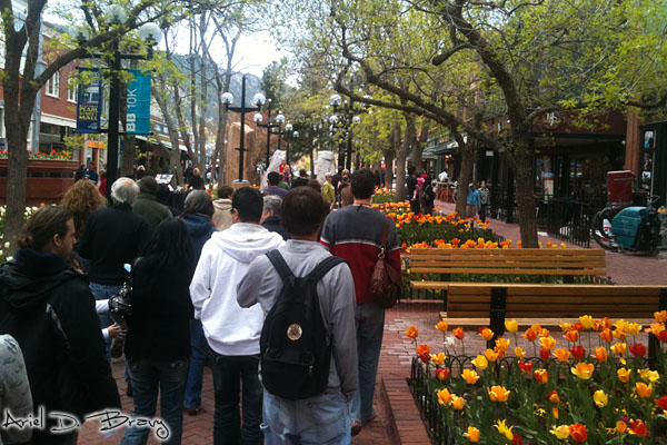 Pearl Street in the spring