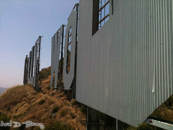 Standing by the Hollywood sign