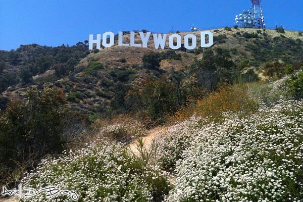 Trail to the Hollywood sign