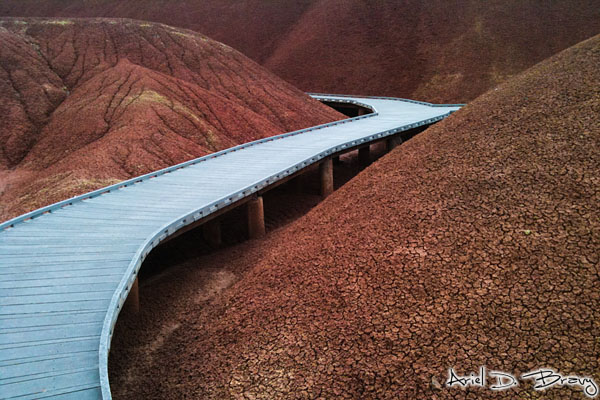 Walking path through the Painted Hills