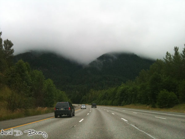 Driving into the Cascades