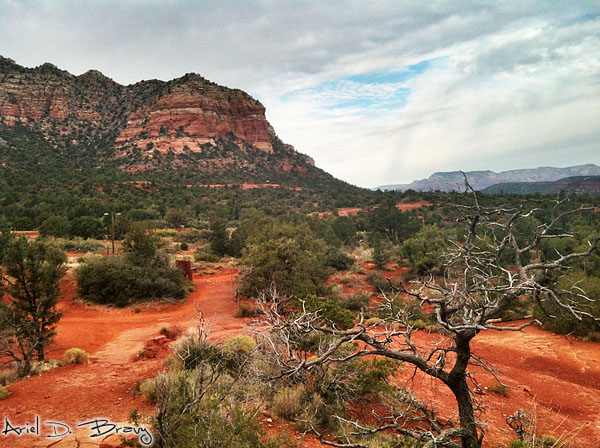 Red rocks from Bell Rock