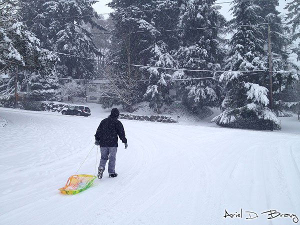 Taking a sled to the store for more supplies