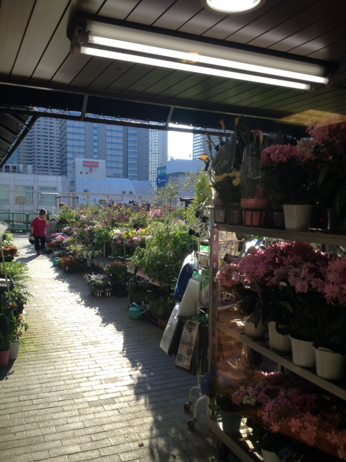 The outside gardening center at Keio department store, Shinjuku, Tokyo