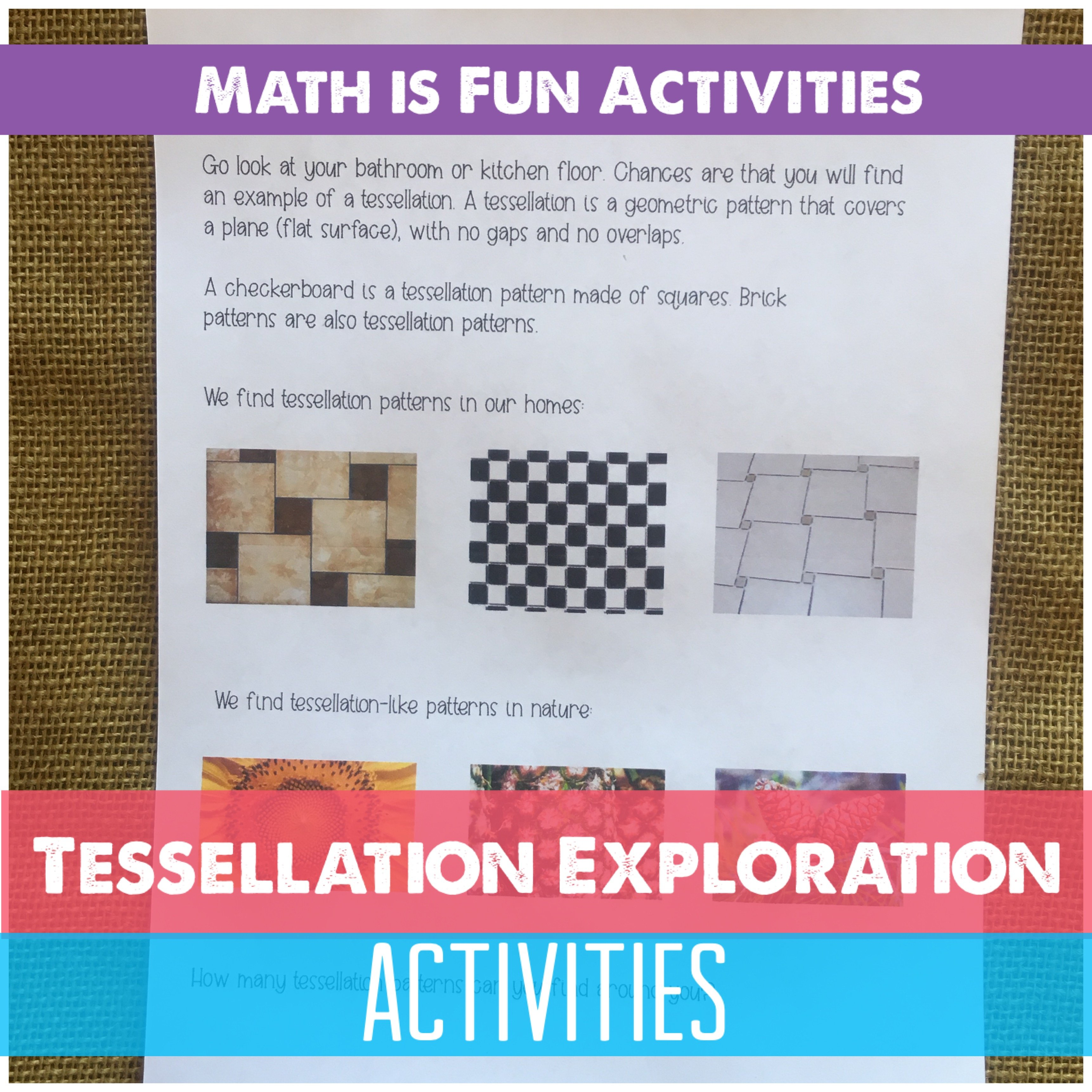 MATHCamp 2018 Tessellation explorations for the whole family. Learning about translation, rotation and reflection while creating tessellations.