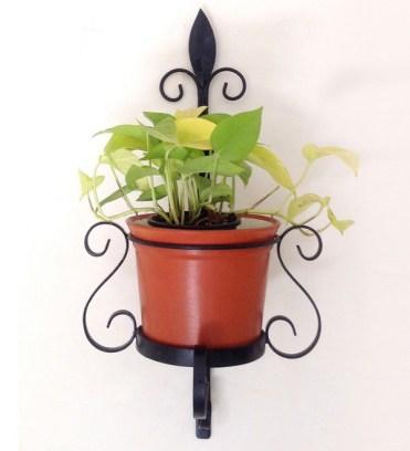 Wall Decor - plants (2)