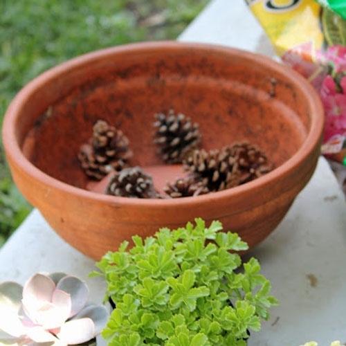 Grey Garden Planters