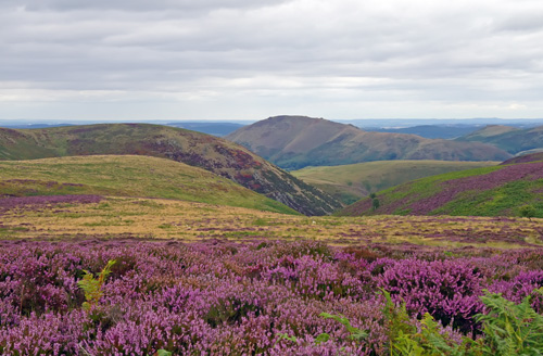 View from The Long Mynd