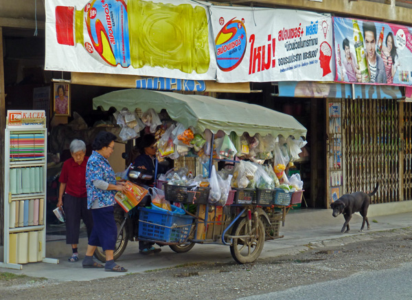 Thai Utility Vehicle - Grocery Store