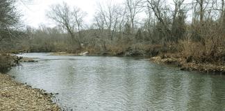 Arkansas man, 25, drowns in Saline River, authorities say