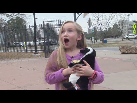 VIDEO: Girl gets VIP tour after Christmas decoration was stolen