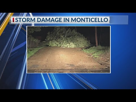 Watch: Trees down, other damage caused by storms in Monticello Sunday evening