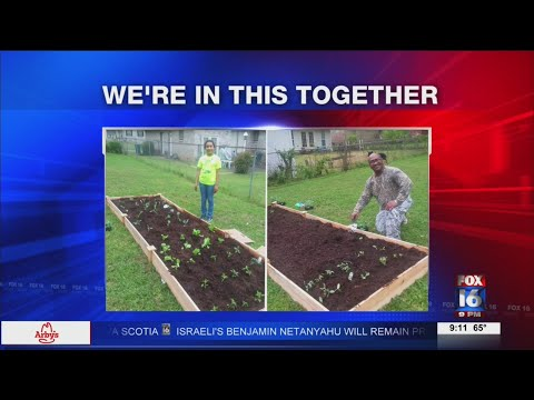 Watch: We're in This Together April 20 PM segment