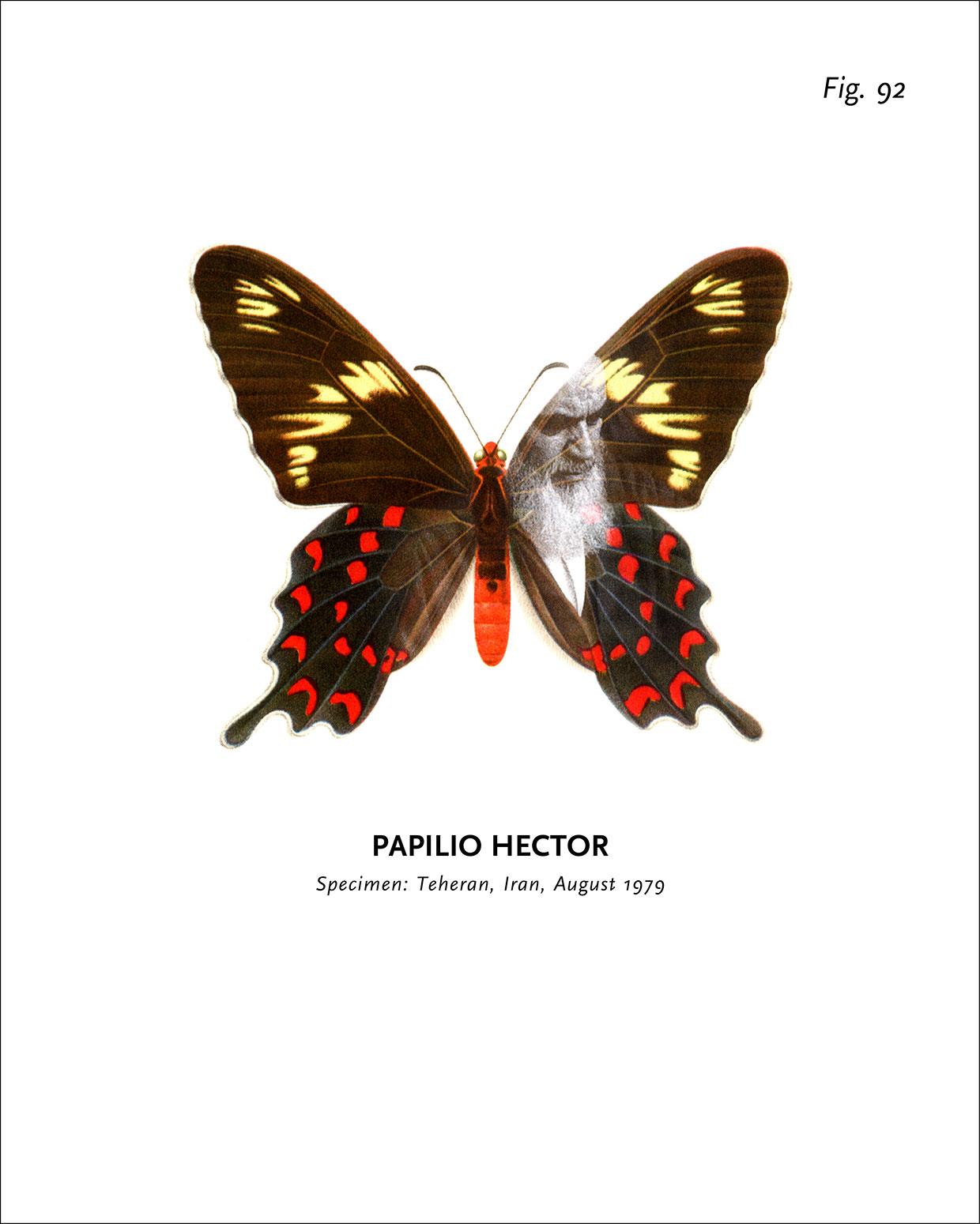 Peter Holst Henckel, World of Butterflies, 1992-2002 (detalje). Courtesy kunstneren