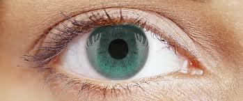 vista-colores
