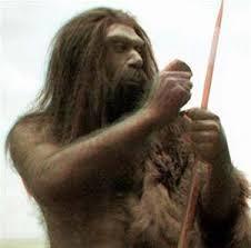 El neandertal era un cazador de la llamada megafauna, los grandes mamíferos que vivieron durante el Pleistoceno, como el mamut. Utilizaban lanzas de madera con puntas de piedra afilada, una evolución mayor a los antecesores.