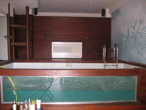 piscina-con-pared-de-cristal